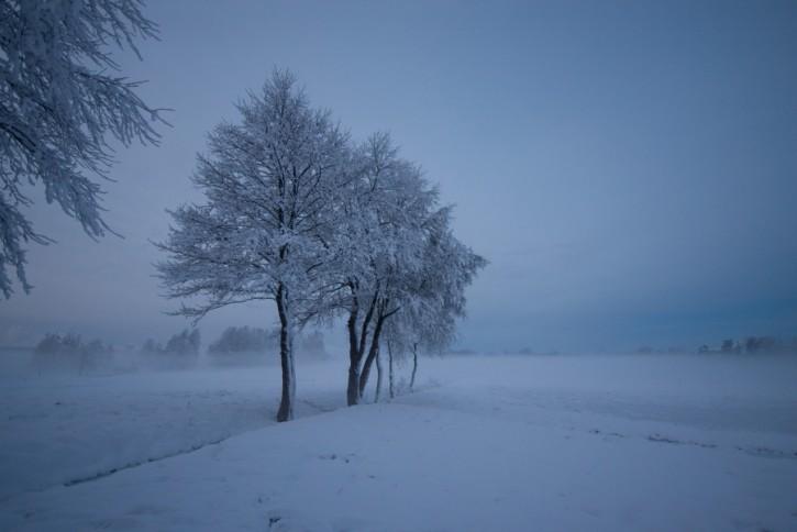 Zimnym wieczorem 3