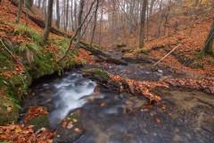 Huczek jesiennie 2