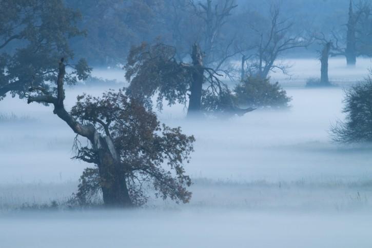 Zimna dolina