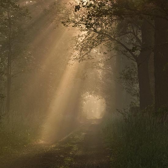Droga i światło