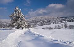 Zima marzeń