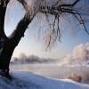 Nadnarwiańska zima