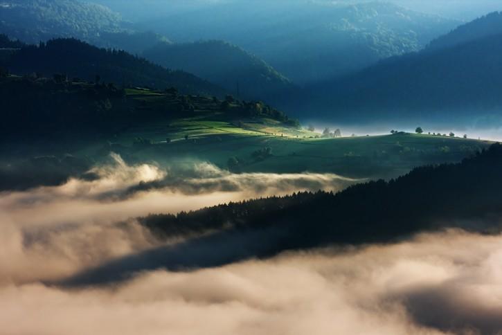 Dzień w dolinie mgieł
