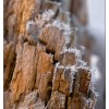 Faktura drewna