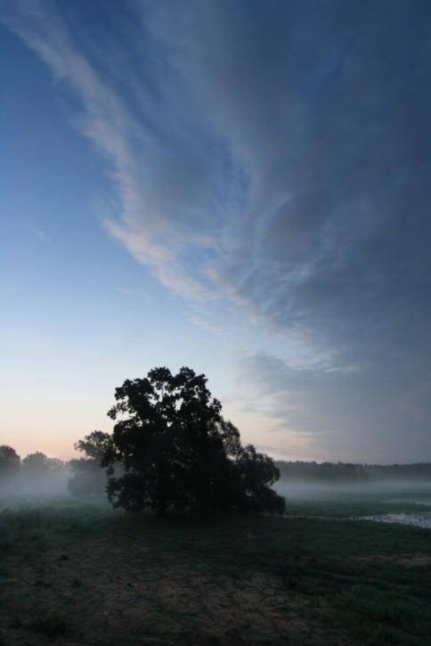 Krajkowo, przed świtem
