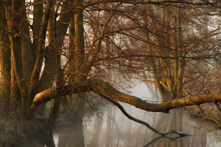 Rzeka Samica