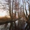 Rzeka Samica II