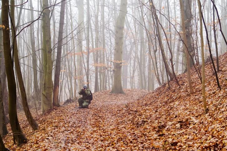 Szycho we mgle