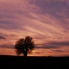Bieszczady i Bieszczadzki Park Narodowy - ostatni post przez Animus